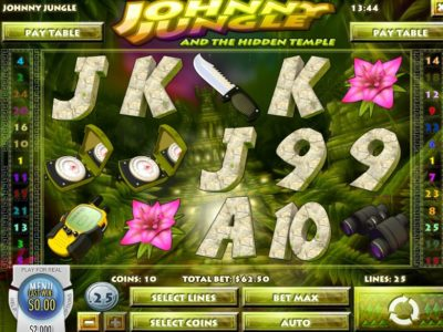 johny Jungle slot screenshot big